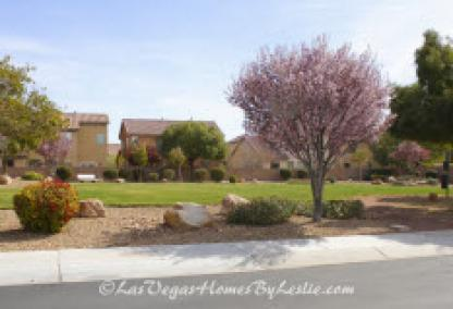 Las Vegas Neighborhood Iron Mountain Ranch Community Park