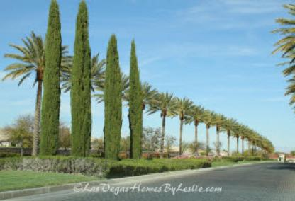 Siena Adult Neighborhood Golf Community Las Vegas Entrance Drive
